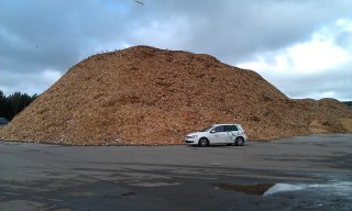 Waste wood chips
